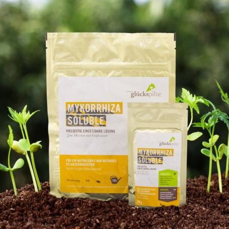 Mykorrhiza Soluble
