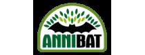 AnniBat